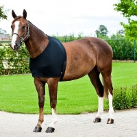 Bib - Lycra Shoulder Rug