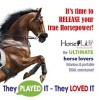 HorsePLAY - the Ride of Your Life! Enjoy SOLO or SOCIALLY