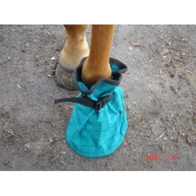 Poultice Boot - Canvas