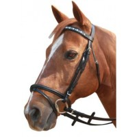 Hanoverian Bridle Linking Horsehead