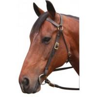 Barcoo Bridle - Economy w/ Brass BLACK