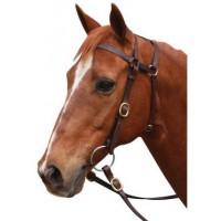 Barcoo Bridle - Extended Head