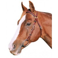 Barcoo Bridle Head - PVC