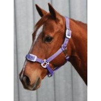 Headstall Deluxe Padded FULL