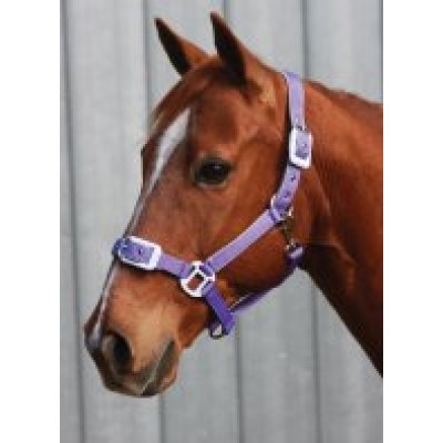 Headstall Deluxe Padded PONY