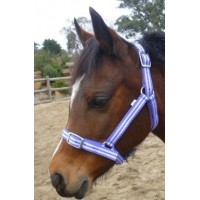 Headstall Nylon Economy PONY