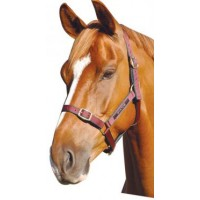 Headstall Nylon Status PONY