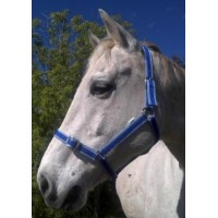 Headstall Nylon Team PONY