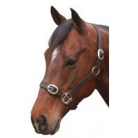 Headstall Leather NP