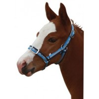 Headstall Nylon Tricoloured FOAL