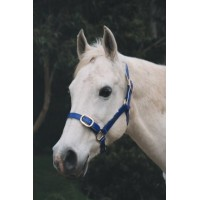 Headstall PVC PONY
