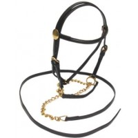 In-Hand Bridle - NP MINI/SML PONY