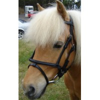 Hanoverian Bridle - MINI