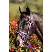Hanoverian Eventing Bridle - PVC