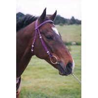 Race Bridle Head - PVC