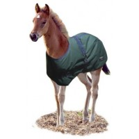 Synthetic Rug FOAL