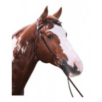 Western Bridle Knotted Brow