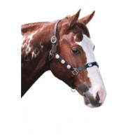 Headstall Western Scalloped