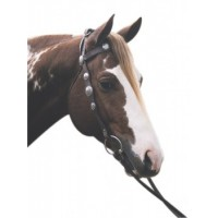 Western Bridle - Scalloped Silver
