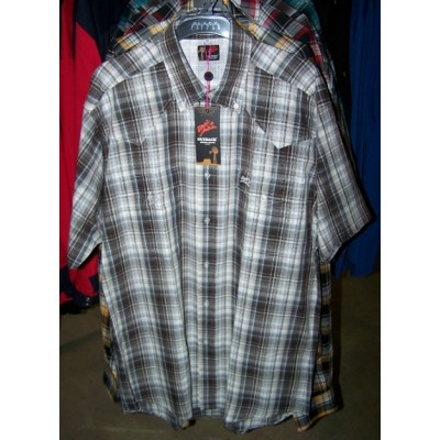 Shirt - Mens Outback Check SS Brown/White