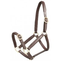 Headstall Leather w/ Brass FOAL