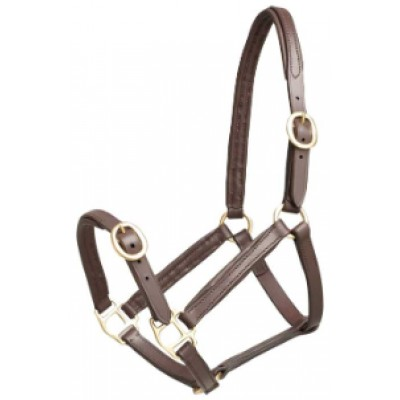 Headstall Leather w/ Brass FOAL