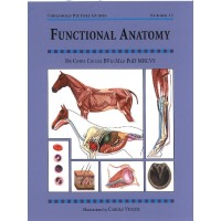 "Book ""Functional Anatomy"" by Chris Colles"