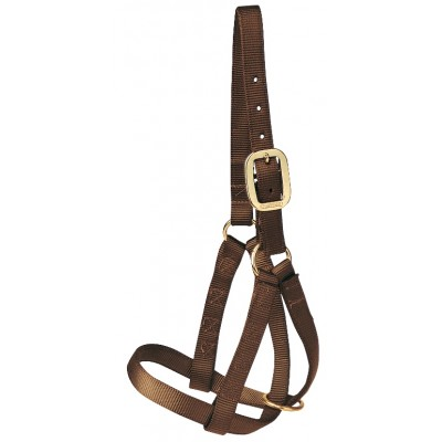 Cattle Halter Nylon - BULL